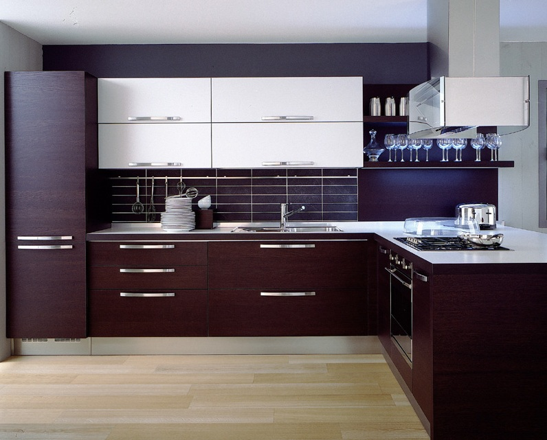 Cool dark wood modern kitchen cabinetsBest of Gallery Design Kitchen Ideas Dark  Wood modern kitchen cabinet ideas