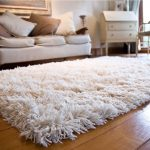 Superior Complexion with white Shag Rug