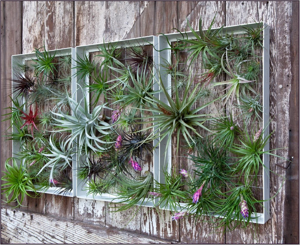 beautify your patio with garden wall art ideas - youtube DOVLWPB