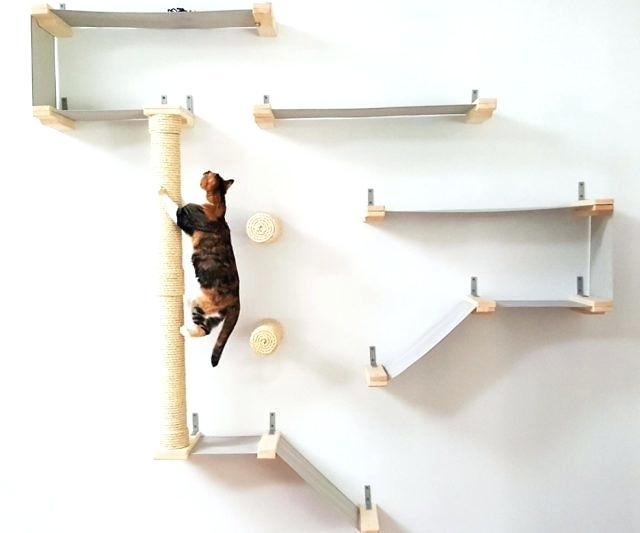 decoration: Wall Shelves Design For Cats To Climb Cat Diy Pinterest