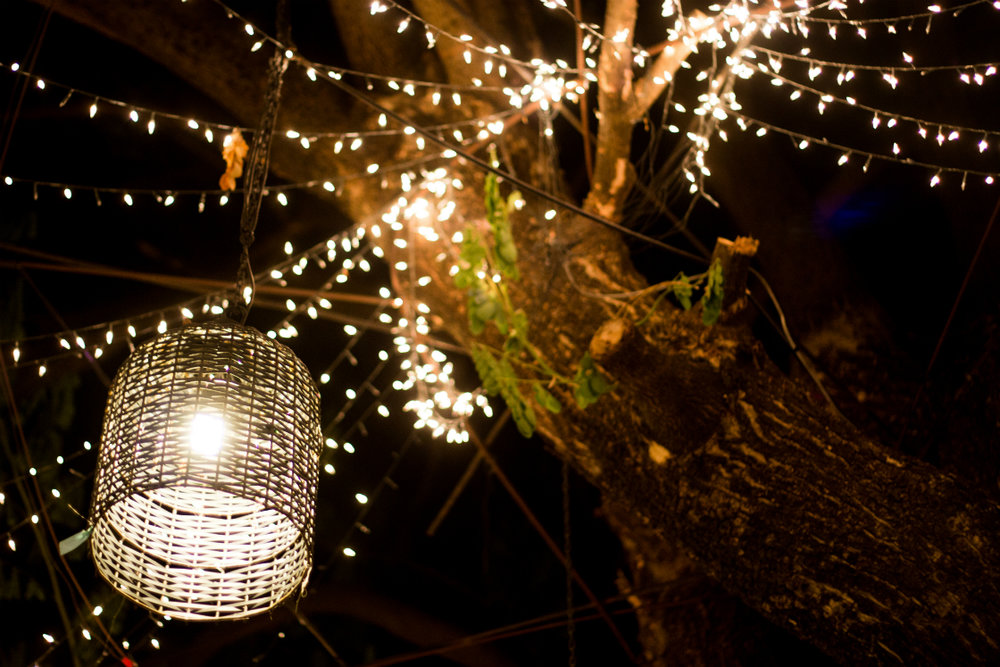 7 Gorgeous Decorative Outdoor Lighting Ideas for your MA Landscape