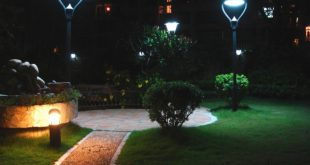 5 Best Outdoor Solar Lights In 2019