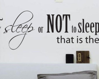 Amazing Bedroom Wall Decal- To Sleep or NOT to Sleep Wall Decal- Large Bedroom bedroom wall art stickers