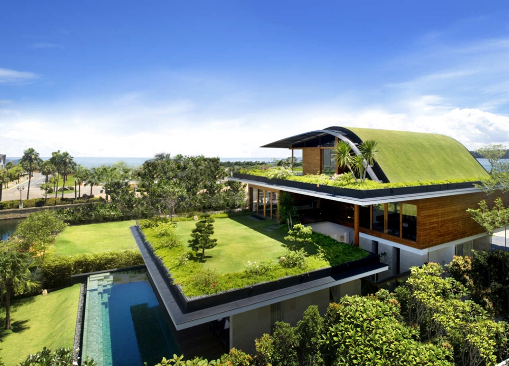 Best Home with green roofs best house designs