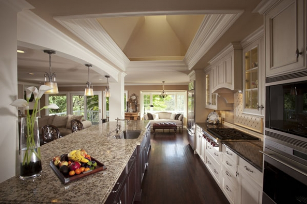 Contemporary Gallery of Open Galley Kitchen Designs open concept galley kitchen designs