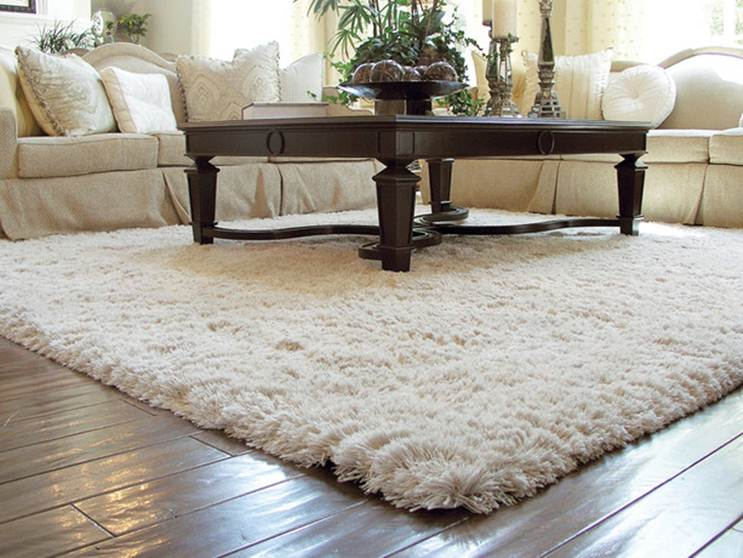 Contemporary Living room Perfect living room carpet ideas Living Room Carpet carpet for living room