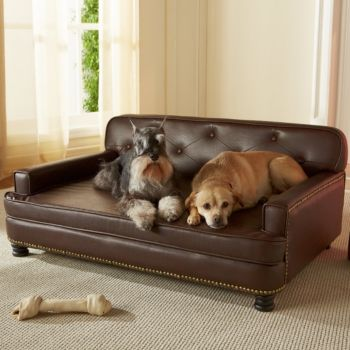 Cozy Enchanted Home Pet Library Sofa Dog Bed dog bed furniture