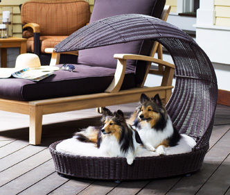 Photos of Outdoor Dog Bed Chaise Lounger luxury dog bed furniture