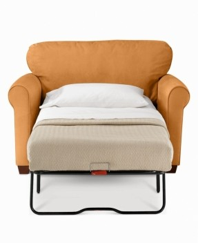 Stylish Twin bed pull-out.. might need one of these with an twin sleeper sofa chair