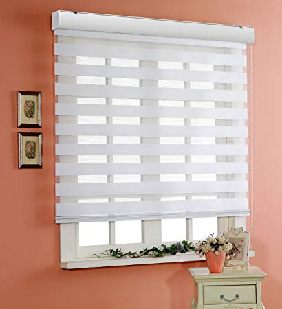 custom cut-to-size , basic horizontal window shade blind zebra dual SHLOBWQ