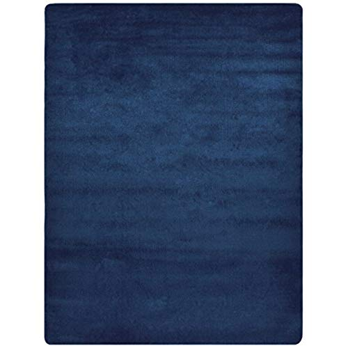 navy blue rug navy blue rugs: amazon.com AUBSLEF