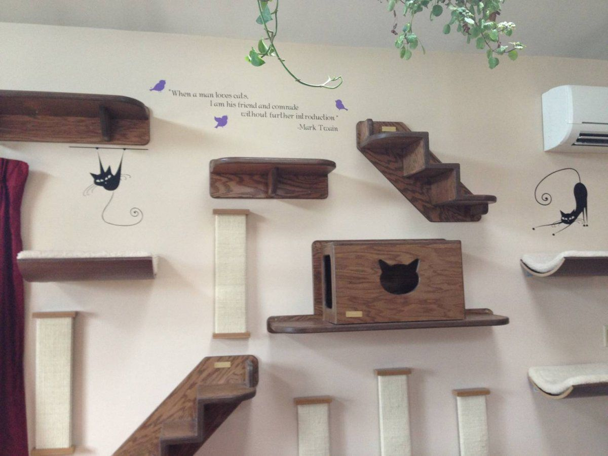 Classic Family Room Area with Wooden Steps Cage Cat Wall Shelves, Black Cat  Stencil Wall Decal, and Black Quotes Style Decoration - . Cat Wall Shelves