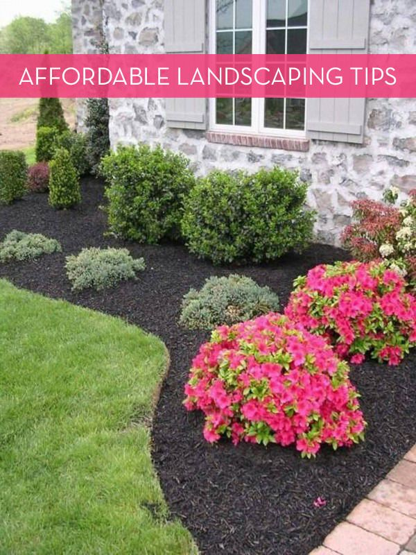 13 Tips For Landscaping On A Budget | Home | Pinterest | Yard landscaping, Front  yard landscaping and Backyard landscaping