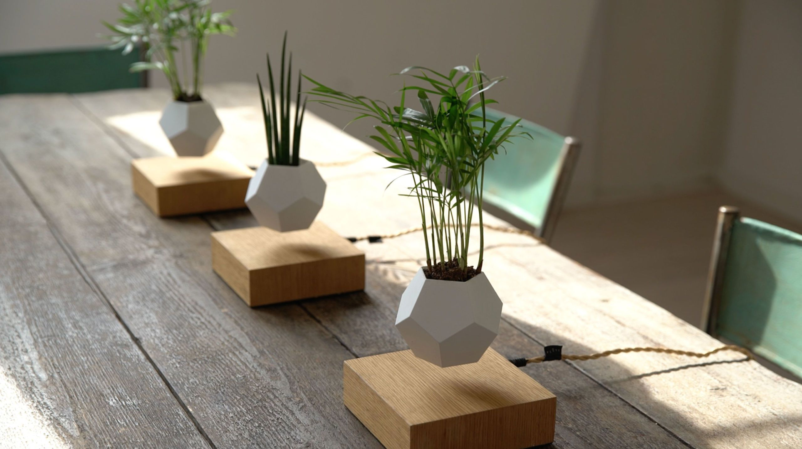 This Decorative Vase Is For Floating Plants - Unique Home Decor